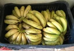 Vendemos Banana Nanica no Atacado