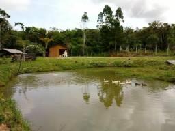 Barbada- otimo investimento- vendo belissimo sitio, com casa toda mobiliada, 3 lagoas