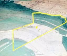 Sitio 16 alqueires em Jardinópolis 2.800.000.00