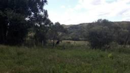150 Hectares de campo com Casa e galpão