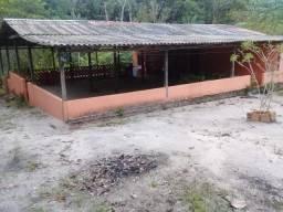 Manacapuru Lindo sitio em, km 69, ramal do Acajatuba com casa mobiliada e igarapé