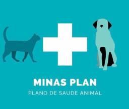 Plano de saúde para pet?s