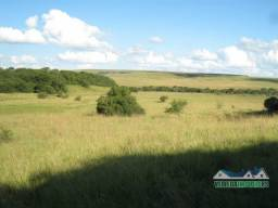 Velleda oferece fazenda p/ pecuária com 236 hectares santana do livramento