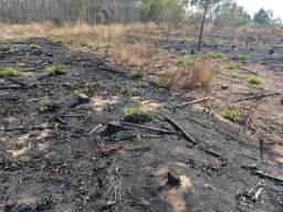 Arrendamento seção fazenda 300 mil - Jaguariaíva- PR
