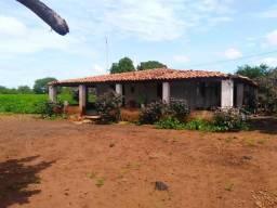 Oportunidade! Fazenda com 530 hectares, com excelente solo em Campo Maior