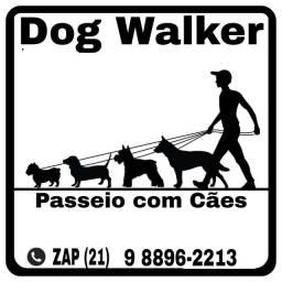 Passeio com Cães em São Conrado.