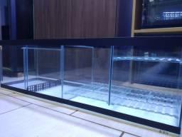 Aquário, aquários, sump, filtro, móveis, sob medida,aquaterrario, rações, plantas