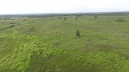 250 alqueires na região de Bragença Pará toda formada por 2 milhões zap *