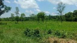 Fazenda 105 Alqueires Próximo Palmas To