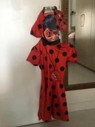Fantasia Ladybug ,usado uma vez!