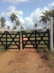 Fazenda em Glória pronta 42 hectares mais fotos em breve