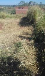 Terreno 15x20 em Araputanga