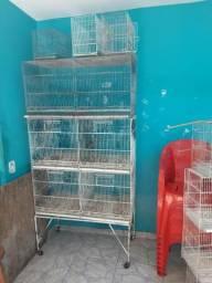 Vendo viveiro. gaiola de reprodução de canario belga comprar usado  Guarulhos
