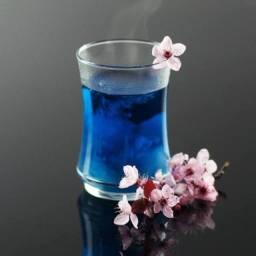 Feijao borboleta, flor azul, clitoria ternatea