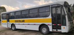 Ônibus e microônibus