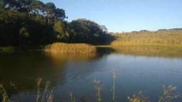 Terrenos no Alagado (Catanduva )