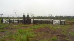 Venda de uma linda fazenda de 117 alqueire,ou 310 hectares no valor de 1.600,0000