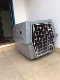 Caixa transportadora clonadi para cães de grande porte.