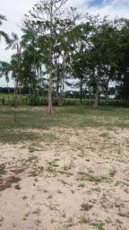 Vende-se um Sítio com duas Casas em um belo Terreno de 4480m2