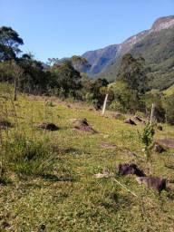 Sitio 10 hectares com escritura, luz, muita natureza