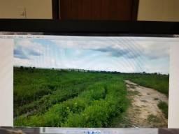 Terra para soja, 592 Alqueires, planta 420 alqueires
