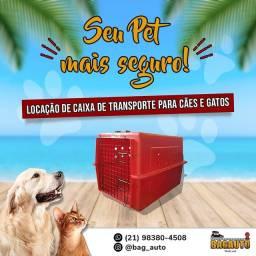 Locação de Caixa de Transporte de Cães e Gatos.