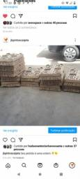 Título do anúncio: Distribuidor de pintos
