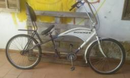 Bicicleta Homer