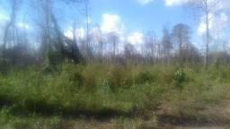 Área 150 hectares