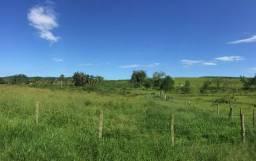 Vendo Terreno rural - Boa Vista, Içara