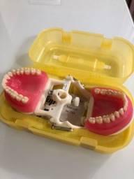 manequim de dentística