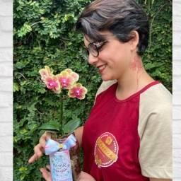Título do anúncio: Auxiliar de Floricultura e Entregador