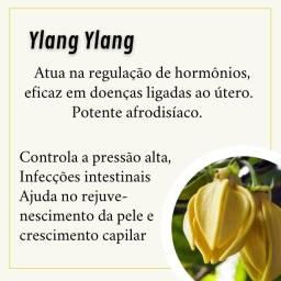 Óleo Essencial Ylang-Ylang