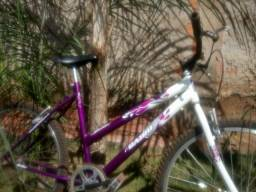Bike conservada