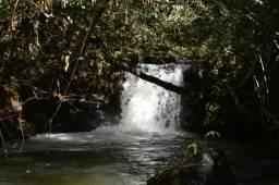 Fazenda com 3.254 alqueires paulista -Região de Primavera do Leste-MT
