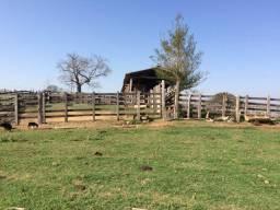 Tiete-Sp, Fazenda 130 Alqueires