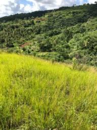 Oferta 4 hectares R$ 60.000 ou 8 hectares por 120.000