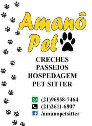 Em Icaraí, Pet Sitter, Dog Walker, Pet Day e Dog Hostel