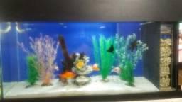 Aquario grande com filtro lateral