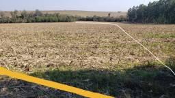 9,5 hectares para venda