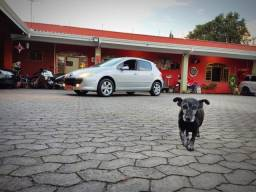 Peugeot 307 FELINE TETO