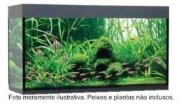 Aquário Luxo (Novo) 60x30x45cm 6mm c/2 Lâmpadas Led + Filtro Externo + Vinil preto