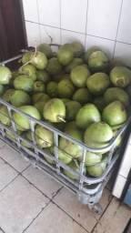 Vendo coco verde e coco ralado
