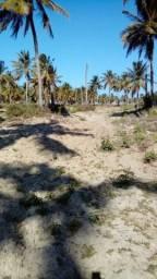 Vendem-se excelente terreno no povoado peba 3hec