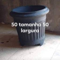 LINDO S VASOS