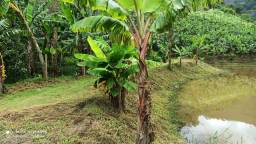 Vendo 2 Terrenos Próximo a Água