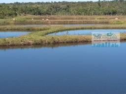 Fazenda 224 Hectares em Várzea Grande 20 km do trevo do lagarto