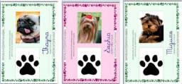 Título do anúncio: Rg Pet - Documento para seu bichinho<br><br>