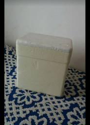 Caixa Térmica de Isopor 18 litros Isofort