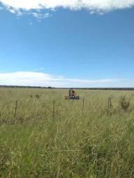 Fazenda à venda por R$ 49.000.000 - Zona Rural - Três Lagoas/MS